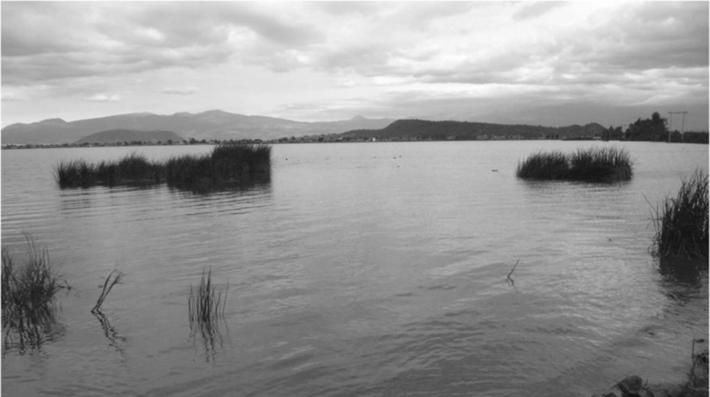 Lake Chalco. Image author: Oliver Santana, source: http://muac.unam.mx/