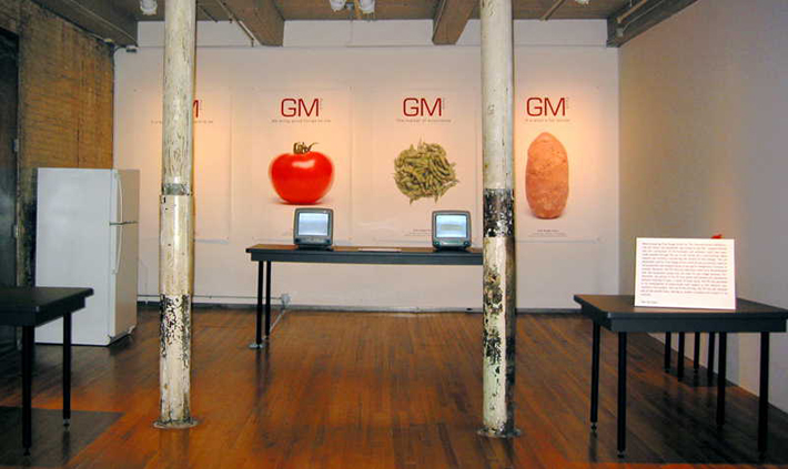 Illustration 10. Critical Art Ensemble's mostly empty installation at MASS MoCA following the confiscation of their project by the FBI. An explanatory panel by the museum is visible to the right of the image (2004).